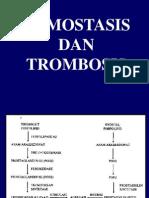 HEMOSTATIS DAN TROMBOSIS.ppt