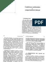 Psicología Industrial y medio ambiente