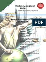 Trabajo de Mercosur Grupo 2