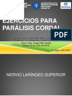 13. Ejercicios Para Paralisis Cordal