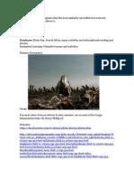 databases primary documents websites kit