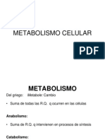 Metabolismo Celular Modificado