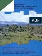 Agrosilvopastura Selva IICA