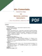 Colunga Alberto - Biblia Comentada Tomo 7 - Epistolas Catolicas Al Apocalipsis