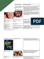 edible plants.pdf