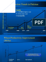wheat slides.ppt