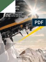 Turning risk into results_AU1082_1 Feb 2012.pdf