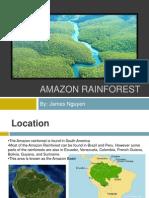 Amazon Rainforest.pptx