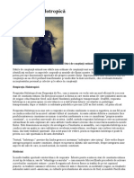 despre respiratia holotropica.doc