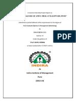 Amul project_final.docx