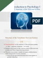 Biopsychology_I_-_Anatomy_of_the_Nervous_System.pdf