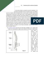 Anatomía col lumbar