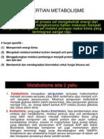 Glikolisis Dan Glikogenolisis Buat Tarbiyah