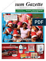 Platinum Gazette 15 November 2013.pdf
