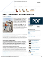 Daily Function of Gluteal Muscles _ LIVESTRONG