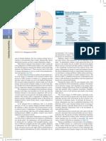 Dipi_Ch016_Page 0404.pdf