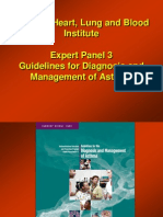 Astm bronsic ghid_expert_panel.ppt