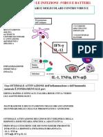 1 Difesa contro le infezioni - virus e batteri.pdf