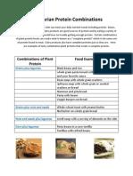 Vegetarian Handout.pdf
