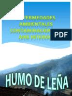 enfermedades ambientales FISIOPATO (1)