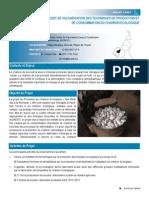 PROJET DE VULGARISATION DES TECHNIQUES DE PRODUCTION ET DE CONSOMMATION DU CHARBON ECOLOGIQUE