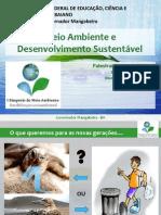 Meio Ambiente e o desenvolvimento sustentável