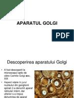 8 Capitolul 11 Aparatul Golgi