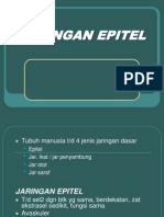 Jaringan Epitel.ppt