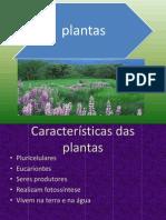 plantas 2003.ppt