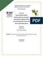 Práctica 2, Comprobación del existencialismo de la respiración aerobia, Sánchez G. Eddy, Grupo 518.