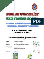 CONTAMINACIÓN POR HIDROCARBUROS DEL RIO COATA