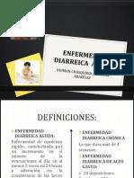 ENFERMEDAD DIARREICA  AGUDA