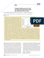 Importantissimo_leadDetection.pdf