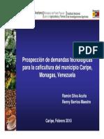 Prospectivas Para La Caficultura Del Municipio Caripe