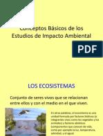 Conceptos Básicos de los Estudios de Impacto Ambiental