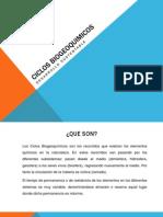 CICLOS BIOGEOQUIMICOS Expo Desarrollo Sustentable