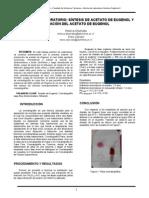 Informe_plantilla (Autoguardado)