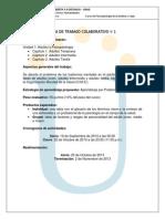 Guia de Trabajo Colaborativo No. 1 Psicopatologia Adultez y Vejez