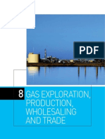 Chapter 8 Gas Exploration, Production, Wholesaling and Trade