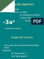 02 Diapo lenguaje algebraico