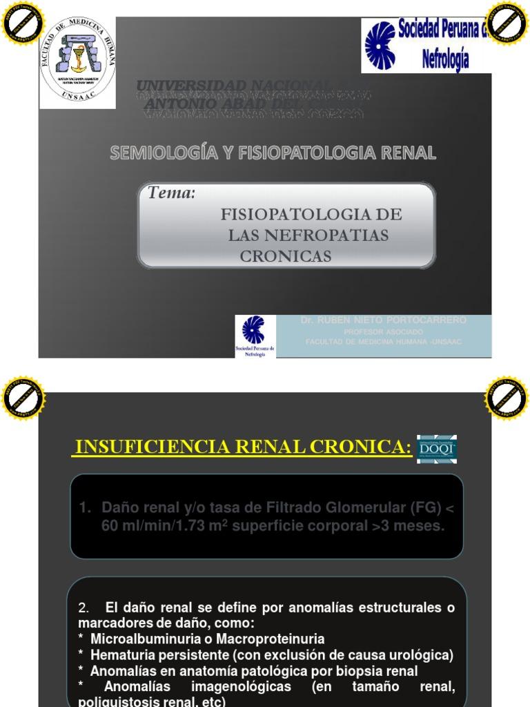 09 Fisiopatologia de Las Nefropatias Cronicas