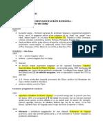 Despre Etnobotanice_informatii Sintetice
