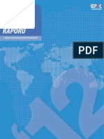 Ddp Yayin Rapor 2012