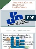 FASES DE INTERVENCIÓN  DEL DESARROLLO ORGANIZACIONAL