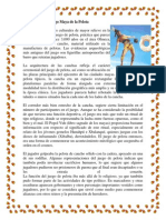 El Juego Maya de la Pelota.docx