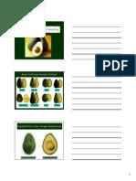05-Postharvest Handling of Avocado (1)