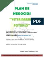Plan de Negocio El Potrillo 100%
