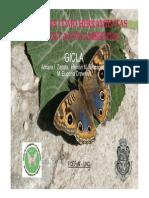 Mariposas y educación ambiental
