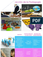 campo de accin de la pedagoga 1