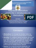 Curso de Olericultura9